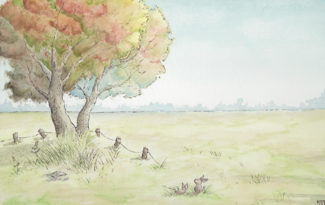 Rabbits watercolor illustration