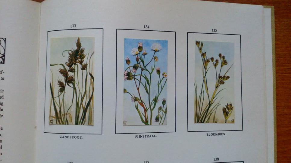 Verkade book flowers