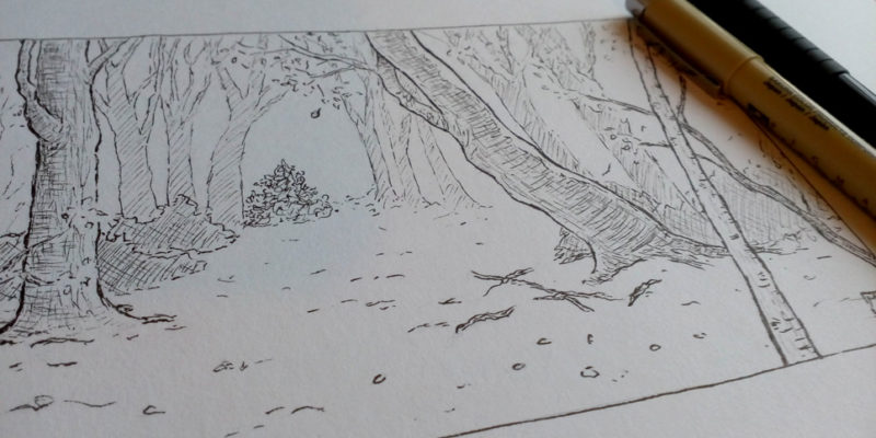 Forest in fall pen illustration